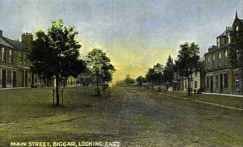 biggar-high-st-trees001